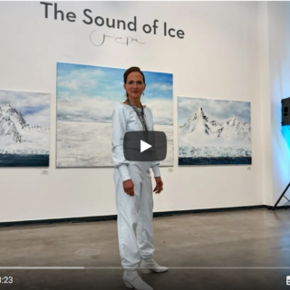 Vernissage THE SOUND OF ICE Barlach Halle K