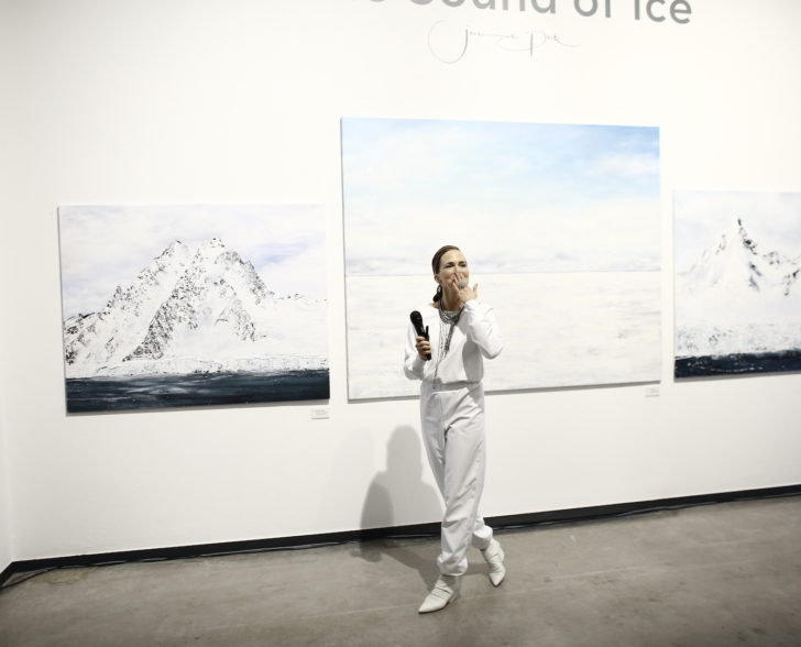 The Sound of Ice Vernissage Rede